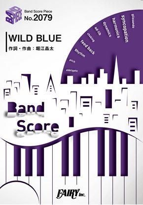 BP2079バンドスコアピース WILD BLUE /PENGUIN RESEARCH の画像