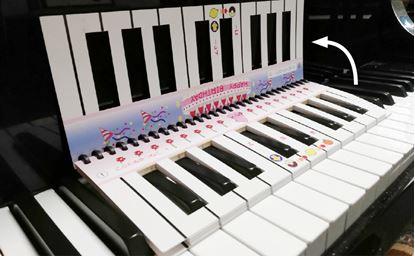 PRFG-319ピアノにおくと「すぐひけるん」 の画像