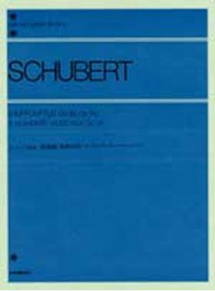 シューベルト 即興曲・楽興の時 の画像